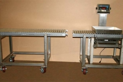 Mobile conveyor and scale